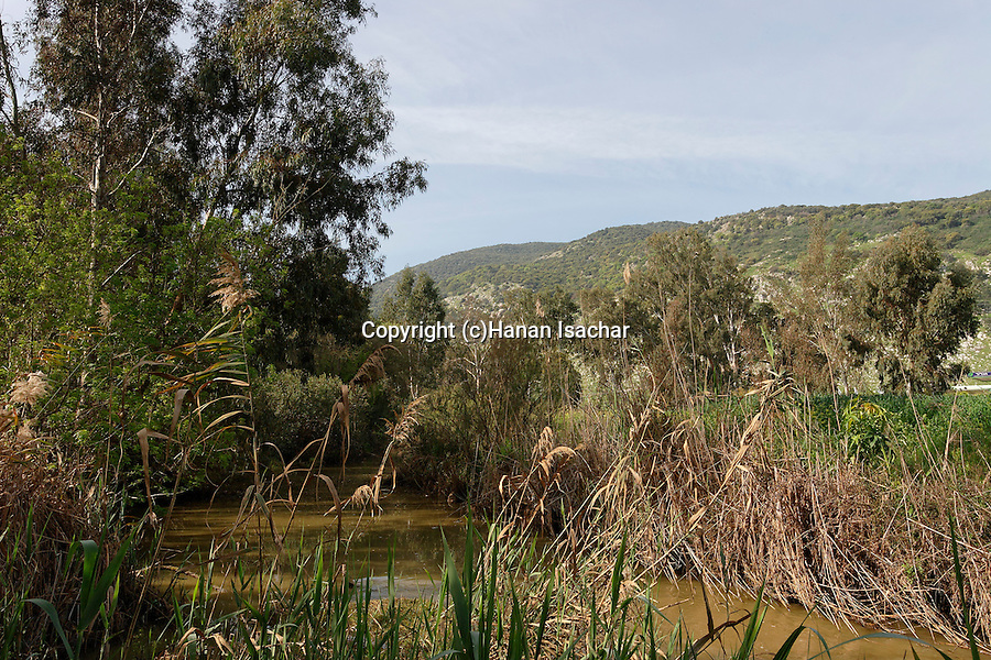 Israel, Jezreel Valley. The Kishon river, Mount Carmel is in the background