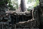 The ruins of Ta Prohm at Angkor Thom, Cambodia. June 9, 2013.