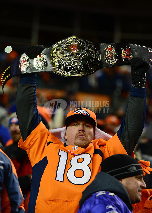 Jan 12, 2013; Denver, CO, USA; Denver Broncos fan in the grandstands against the Baltimore Ravens during the AFC divisional round playoff game at Sports Authority Field.  Mandatory Credit: Mark J. Rebilas-