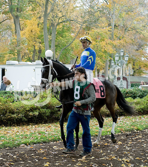 She's All Scat before The Xtra Heat Stakes at Delaware Park on 10/27/12...