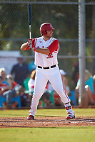 Ohio State Buckeyes designated hitter Zach Ratcliff (32) at bat during a game against the Illinois State Redbirds on March 5, 2016 at North Charlotte Regional Park in Port Charlotte, Florida.  Illinois State defeated Ohio State 5-4.  (Mike Janes/Four Seam Images)