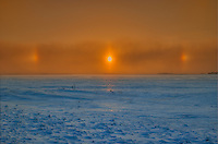 Sun dogs in winter<br /> Altona<br /> Manitoba<br /> Canada