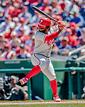 23 August 2018: Philadelphia Phillies outfielder Odubel Herrera in action against the Washington Nationals at Nationals Park in Washington, DC. The Phillies shut out the Nationals 2-0 to take the 3rd game of their 3-game mid-week divisional series. Mandatory Credit: Ed Wolfstein Photo *** RAW (NEF) Image File Available ***