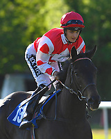 Twilighting ridden by Harry Bentley goes down to the start  of The Saunton Sands Hotel North Devon Maiden Stakes during Evening Racing at Salisbury Racecourse on 25th May 2019