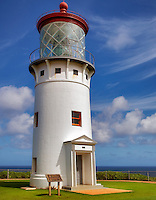 Kilauea Lighthouse with two Nenes Geese. Kauai, Hawaii