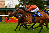 Winner of Dartmouth General Contractors Ltd Handicap (Div 1), Red Dragon(5) ridden by Rob Hornby and trained by Michael Blanshard during Afternoon Racing at Salisbury Racecourse on 7th August 2017
