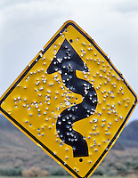 Road sign pitted with bullet holes. Succor Creek State Recreational Area, Oregon.