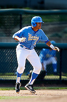 Kevin Williams #5 of the UCLA Bruins runs the bases during a game against the California Golden Bears at Jackie Robinson Stadium on March 23, 2013 in Los Angeles, California. (Larry Goren/Four Seam Images)