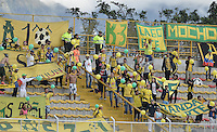 IBAGUÉ -COLOMBIA, 08-08-2015. Hinchas del Hula corean a su equipo durante el partido entre Deportes Tolima y Atlético Huila por la fecha 5 de la Liga Aguila II 2015 jugado en el estadio Metropolitano de Techo de la ciudad de Bogotá./ Fans of Huilacheer their team during the match between Deportes Tolima and Atletico Huila valid for the 5th date of the Aguila League II 2015 played at Metropolitano de Techo stadium in Bogota city. Photo: VizzorImage / Gabriel Aponte / Staff