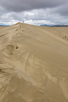 Great Kobuk Sand Dunes in the Kobuk Valley National Park, Arctic, Alaska.