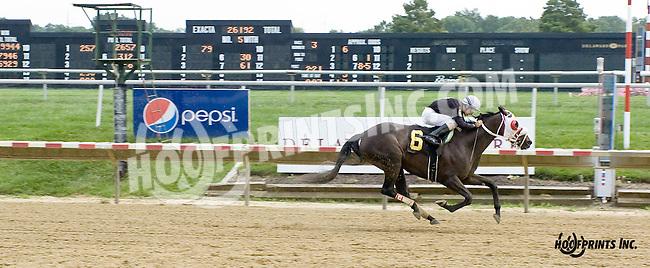Artic Bird winning at Delaware Park on 8/20/14