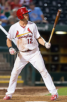 Stephen Piscotty (12) of the Springfield Cardinals stands at bat during a game against the Northwest Arkansas Naturals at Hammons Field on August 20, 2013 in Springfield, Missouri. (David Welker/Four Seam Images)