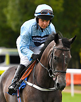 Huddle ridden by Sophie Smith goes down to the start of The Gift Of Sight Handicap  during Evening Racing at Salisbury Racecourse on 3rd September 2019