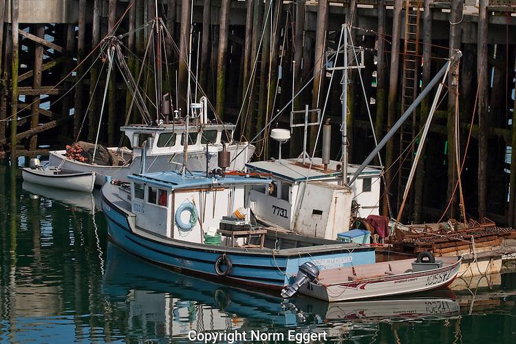 Fishing boats in Head harbor