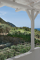 View from the covered terrace of the neatly planted vegetable garden below