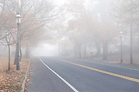 Quiet residential neighborhood with a two lane road on a foggy morning