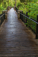 Board walkway at Petit Jean State Park