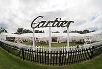 General View of the Cartier Celebrity Lounge during the Cartier Queens Cup Final match between King Power Foxes and Dubai Polo Team at the Guards Polo Club, Smith's Lawn, Windsor, England on 14 June 2015. Photo by Andy Rowland.