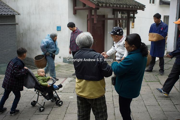 TEA - HANGZHOU (digital)