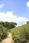 Israel, Upper Galilee, the Golden Park in Kiryat Shmona