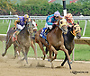 Cherokee'smoonbeam winning The Margaret MacLennan Memorial race at Delaware Park on 9/24/14