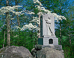 Gettysburg National Military Park, PA<br /> Flowering dogwood trees encircle the Fifth Michigan's Infrantry Monument