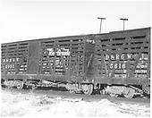 3/4 view of D&amp;RGW stock car #5952 in train at Hartner.  #5616 is coupled to it with about 1/3 visible.<br /> D&amp;RGW  Hartner, CO  Taken by Richardson, Robert W. - 12/31/1952