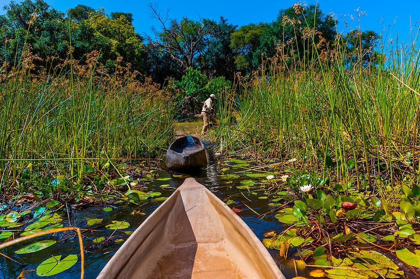 A mokoro (canoe), near Kwara Camp, Okavango Delta, Botswana.