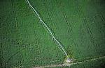 URUGUAY Grossflaechiger Anbau von Monsanto Gensoja fuer Futtermittel Export nach China zur Mast von Schweinen Huehnern usw.  / URUGUAY  Monsanto GMO soya bean field with irrigation system, soja beans are exported to China for animal fodder for pig, chicken etc.