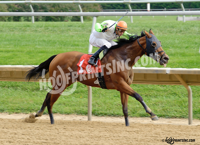 Virginia Ann winning at Delaware Park on 9/18/14