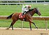 Virginia Ann winning at Delaware Park on 9/18/14
