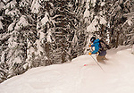 Revelstoke Powder and Parlor Skis
