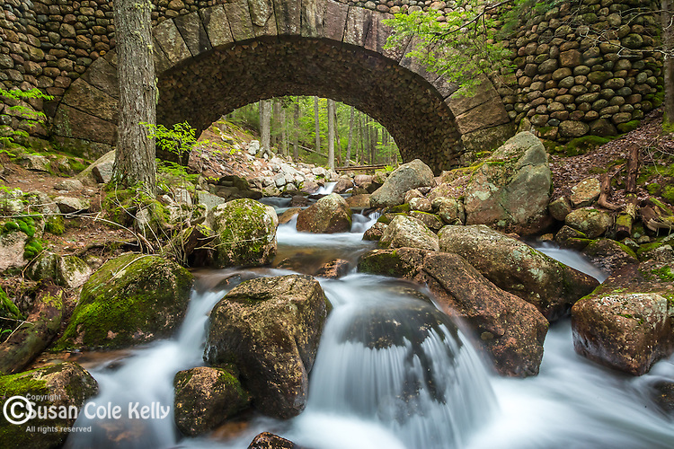 Jordan Stream and the Fieldstone Bridge in Acadia National Park, Maine, USA