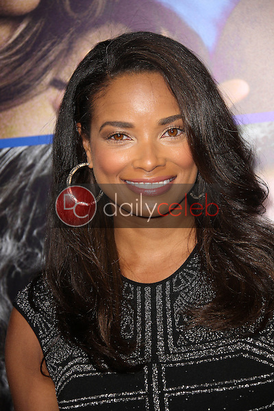Rochelle Aytes<br />