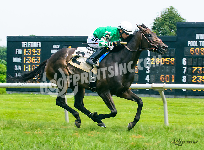 Well Blessed winning at Delaware Park on 7/20/17