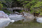 Vancouver Island, British Columbia:<br /> Foot bridge and stream with morning fog on Tonkin beach