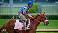 Rose to Gold, trained by Sal Santoro, works out in preparation for the Kentucky Oaks at Churchill Downs on April 29, 2013.