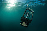 Light trap used to collect specimens at night in the waters around Lizard Island.