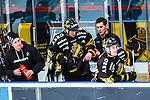 Stockholm 2014-03-21 Ishockey Kvalserien AIK - R&ouml;gle BK :  <br /> AIK:s Christopher Aspeqvist har skadat handen armen och tittas till i b&aring;set<br /> (Foto: Kenta J&ouml;nsson) Nyckelord:  skada skadan ont sm&auml;rta injury pain