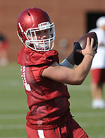 NWA Democrat-Gazette/ANDY SHUPE<br /> Arkansas running back Connor McPherson makes a catch Tuesday, March 28, 2017, during spring practice at the UA practice facility in Fayetteville.
