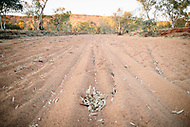Image Ref: CA630<br />