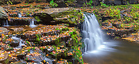 Ricketts Glen State Park, PA: Small falls on Kitchen Creek in autumn