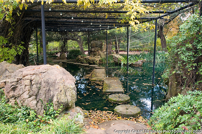 A wisteria coverd arbor shelters a path constructed of  old mill stones leading across a reflection pool at the Douglas Chandor Garden in Weatherford, Texas