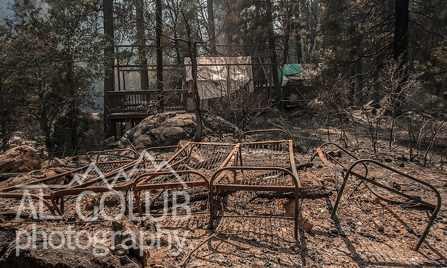 The Berkeley Tuolumne Family Camp, a city-owned camp that has operated since 1922, burned in the Rim Fire yesterday between 2:00 and 3:000 pm. Foreground one of the many tent cabins.