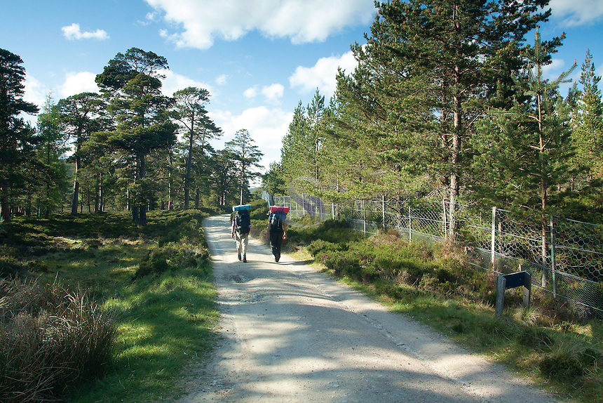 Walking near the Linn of Dee, Cairngorm National Park, Aberdeenshire