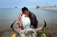 Qinghai Lake - China