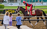 BALTIMORE, MD - MAY 18: Classic Empire jogs in front of watching fans in preparation for the Preakness Stakes this Saturday at Pimlico Race Course on May 18, 2017 in Baltimore, Maryland.(Photo by Scott Serio/Eclipse Sportswire/Getty Images)