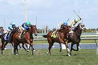 HALLANDALE BEACH, FL - MARCH 04:  Dream Dancing #1 (inside horse) wth jockey Julien Leparoux on board, wins the Herecomesthebride (Grade III) Stakes at Gulfstream Park on March 04, 2017 in Hallandale Beach, Florida. (Photo by Liz Lamont/Eclipse Sportswire/Getty Images)