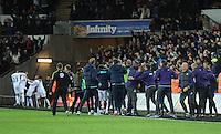 161126 Swansea City v Crystal Palace