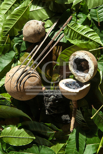 Aldeia Baú, Para State, Brazil. Genipapo, charcoal and palm sticks for body and face paint.